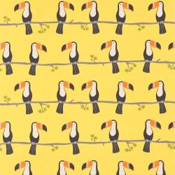 Terry toucan