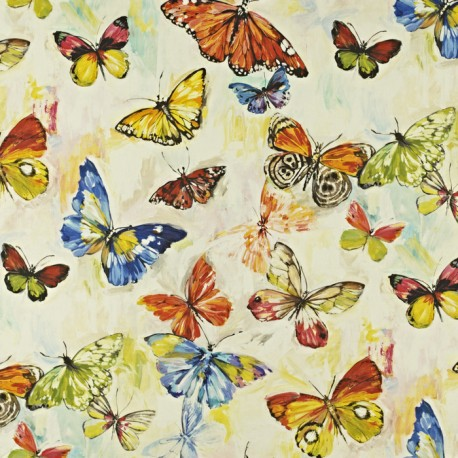 Butterfly could