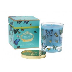 Portus Cale Vela Butterfly